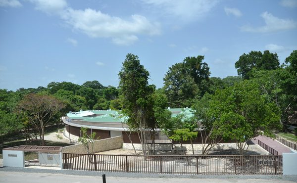 グアテマラ共和国 ティカル国立公園文化遺産研究保存センター 徳倉 ...
